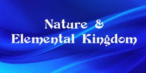 nature-300x150